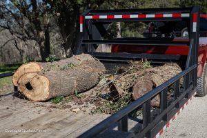 Scurlock Farms Vacation Retnals Splitting Wood Georgetown TX