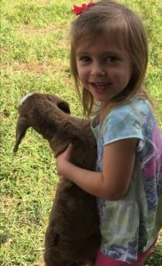 Young guest with goat at Scurlocki Farms