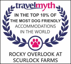 travelmyth_910754_in-the-world_dog_friendly_p10en_web